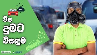 How To Get Your Vehicle Emission Test 🇱🇰 useinfotube