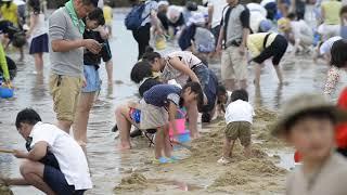 大阪府貝塚市二色の浜では30日、潮干狩りに訪れた約2千人の家族連れら...
