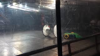 Extreme Robots Cheltenham 2018: Gabriel Vs H5