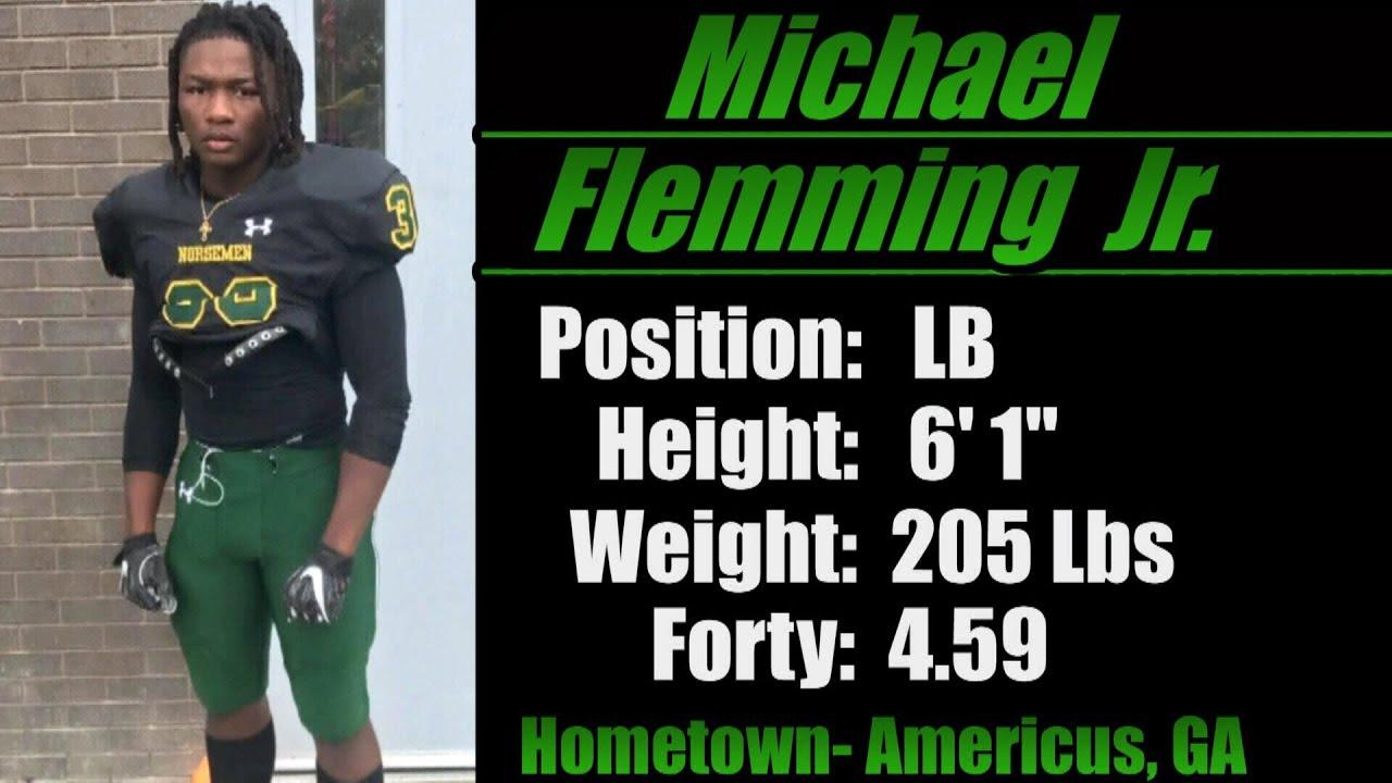 Image result for Michael Flemming Mesabi Range