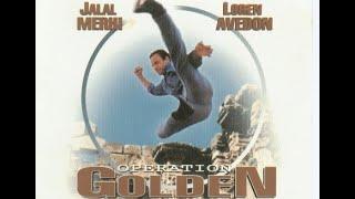 Operation Golden Phoenix, OGP