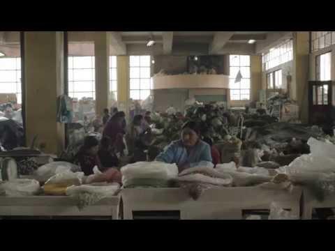 San Roque: Una casa para todos
