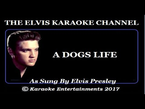 Elvis Presley At The Movies Karaoke A Dogs Life