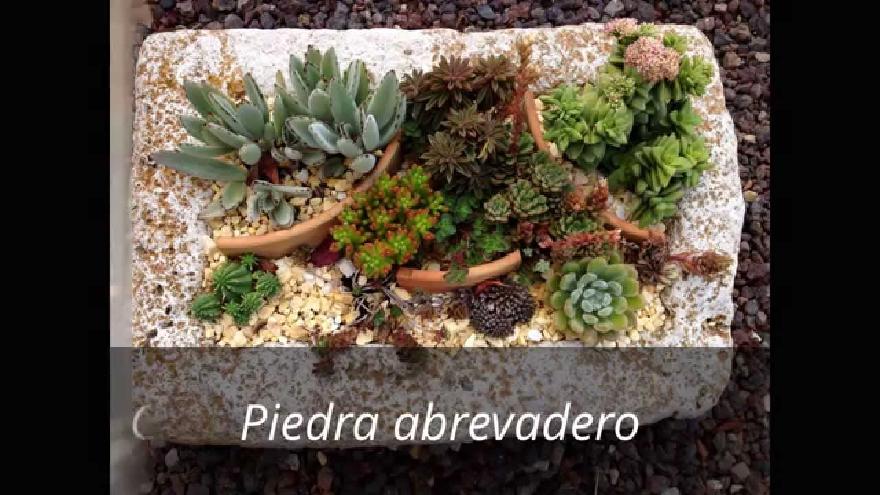 Como decorar con suculentas youtube for Como decorar un jardin con plantas