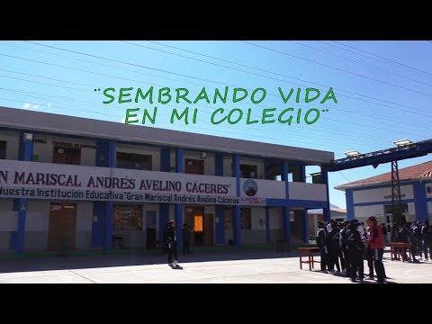 Proyecto Educativo: Sembrando Vida en mi Colegio