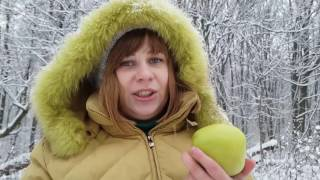 Яблочная диета. 🍎Часть 5. День 3. Серия 1. Эксперимент на себе