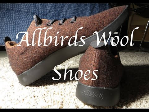 My Wool Shoes- Allbirds Review