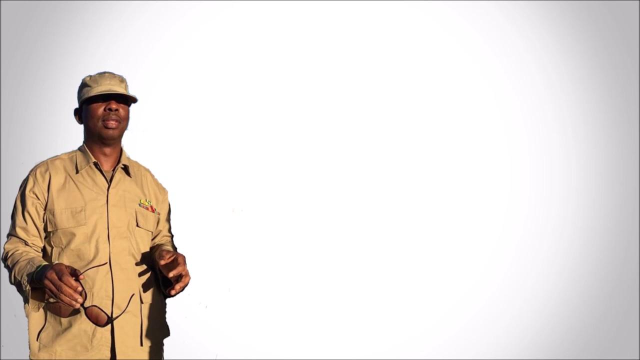Devanand Gattoo - Bacchanal - YouTube