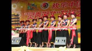 sydney hubei festival 2011mp4