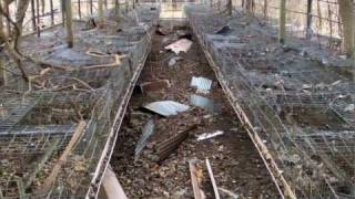 Abandoned Poultry Farm in Japan 2/2
