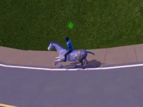 how to take pets on walk in sims