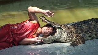 Niezwykly Swiat - Tajlandia - Sriracha Tiger Zoo - Krokodyle