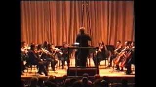 Verdi String Quartet 1st movement - orchestral version