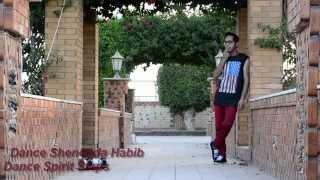 violin music /Dance Spirit Steps / Shenouda Habib