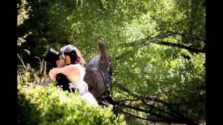 Hobart Wedding Photography