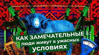Бишкек: бараны на дорогах, лечение собачьим жиром и атмосфера 90-х в Кыргызстане