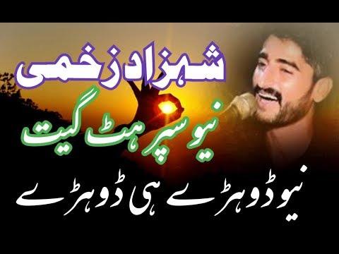 Download Aare Chalaye Ni Sade Haan te || Shahzad Zakhmi || Latest Saraiki Song 2020 || Dohre Hi Dohre