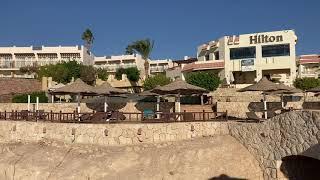Egypt Sharm el Sheikh Египет Шарм эль Шейх