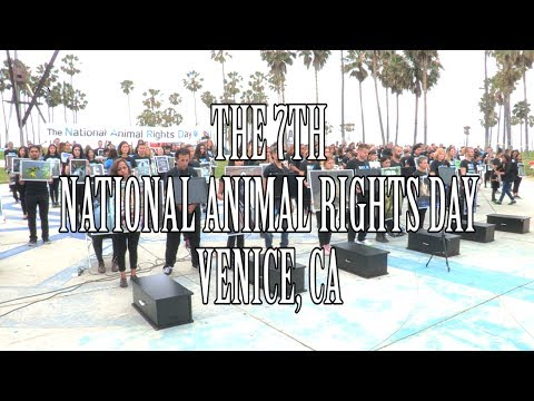 NARD - Moby at National Animal Rights Day in Los Angeles 2017