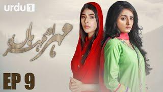 Meher Aur Meherban   - Episode 9 | Urdu 1 Dramas | Affan Waheed, Sanam Chaudhry, Ali Abbas