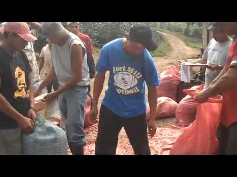 Jinotega Nicargaua: Weighing Coffee
