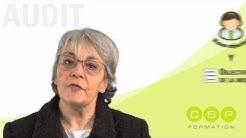 Expliquer ce qu'est un audit - Vidéo Audit 1/12