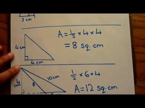 Find area of triangle calculate triangle area very easy to find area of triangle calculate triangle area very easy to learn ccuart Image collections