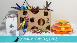Amazon Cat Toy Haul Cat Tested