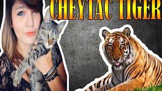 Point Blank - 2X8 Ellen Simili e Netenho - CHEYTAC TIGER