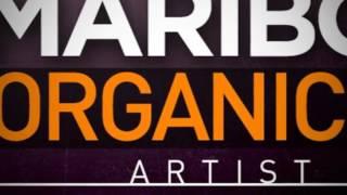 Maribou State Organic Electronic - Royalty Free Samples
