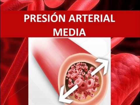 Que mide la tension arterial media
