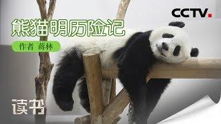 《读书》 20190817 蒋林《熊猫明历险记》 熊猫明成为伦敦的明星| CCTV科教