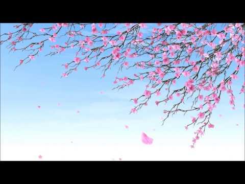 Brandi Carlile-Hiding My Heart Lyrics-HD
