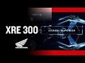 XRE 300 2017