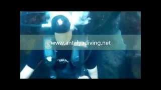 Antalya Scuba Diving Tour Packages Padi Cmas Dive Trip School