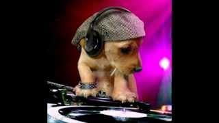 Guayando - Fulanito, Loba - las chicas de can (mix)
