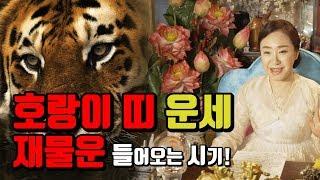 2019년 호랑이띠 운세와 개운방법 [서울점집 백련당]