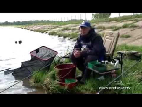 пруды в алферово и отзывы о рыбалке