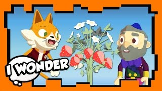I Wonder - Episode 6 - Stampylonghead (Stampy Cat) and Wizard Keen - WONDER QUEST