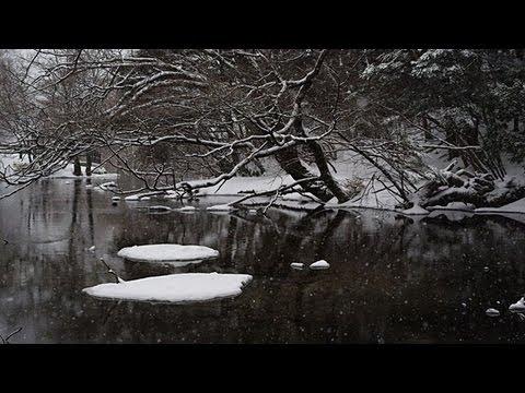 奥日光 雪景色 Snowscape in Oku-Nikko ( Shot on RED EPIC High-speed )