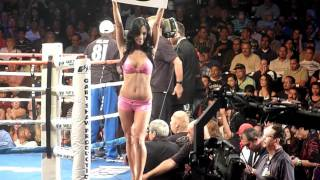 Showtime Sports Ring Girls