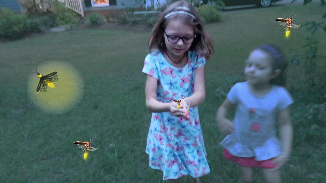 Kids Catch Fireflies Youtube
