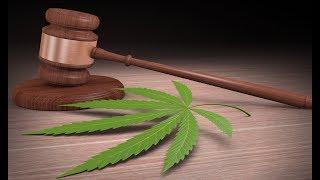 420: Let's Decriminalize GOVERNMENT