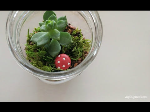 Diy Craft How To Make A Mason Jar Terrarium With Succulents Youtube