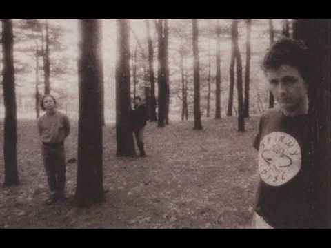 GALAXIE 500 - Decomposing Trees (Peel Sessions)
