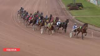 Vidéo de la course PMU PRIX D'AVESNIERES
