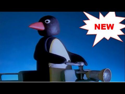 Pingu New Episodes Full Screen