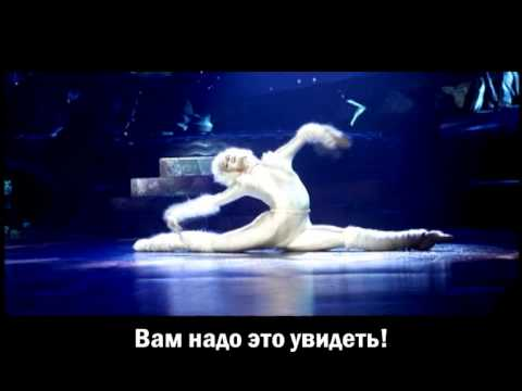 Cats musical (Moscow)