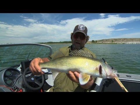 MAGICAL McConaughy Walleye Fishing Babe Winkelman's Good Fishing