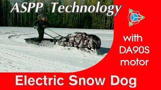 Снежная ЭЛЕКТРО СОБАКА | Snowmobile from STiIN with ASPP 3 kW Motor
